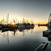 Steveston, Richmond British Columbia by trainerKEN.