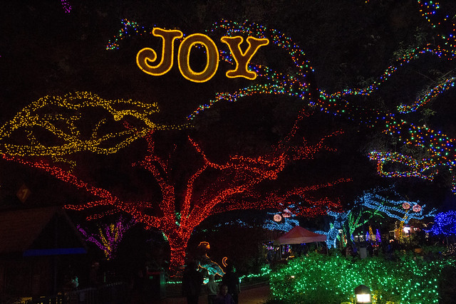 Zoo Lights_64