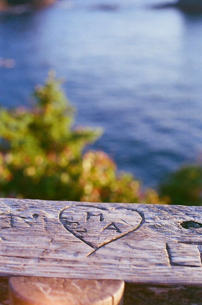 neah bay, cape flattery, 35mm film | Liz Morrow Studios
