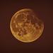 luna-1-5 by hypervel