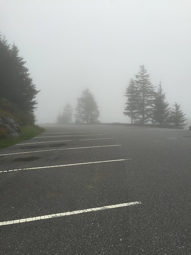 Clingman's Dome hike 8