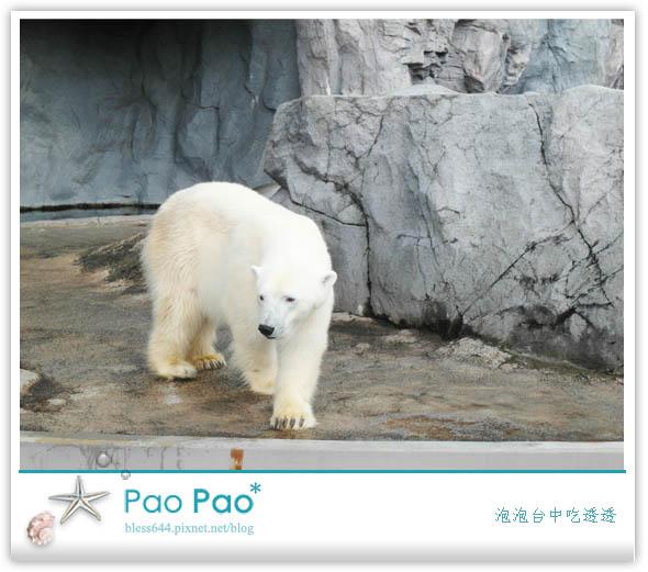 北海道-旭川動物園、大通公園、狸小路