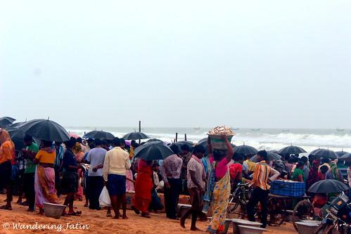 Chirala Fish Market
