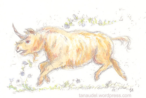 Illustration Friday: Unicorn