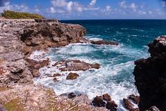Barbados-2014-02-04-8431