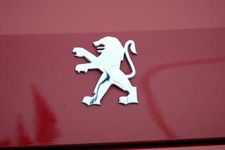 Peugeot 407 Coupé (logo)