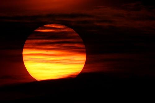 orange sun sunshine sunrise interestingness canon20d hamwithcam hwc explore destin 500mm whocares top500 1600mmeffective exploretop500 500mmf8nreflex atlantascavengerhunt exploretop100 2006ash11 2006ash114 nikkor500mm nikkor2xconverter novoflexeosnikadapter no97asof72306