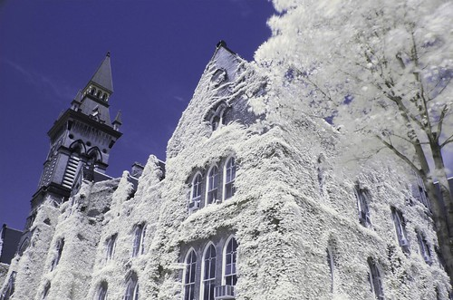 Furry building - Colour IR