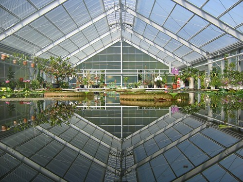 Greenhouse at one of the jigoku