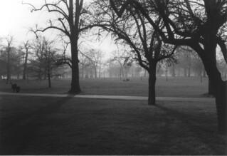 Gloomy Hyde Park