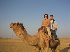 Camel ride in Rajastan
