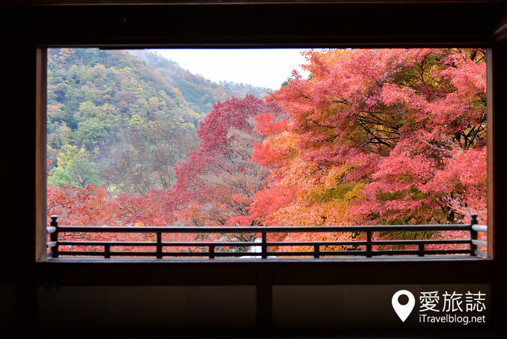 京都赏枫景点 琉璃光院 10