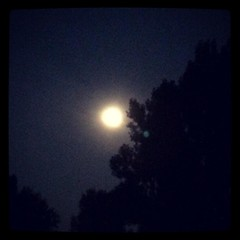It's hard to get a decent pic with an iPhone, but it's mostly the notion of the beautiful full moon that captivates me.
