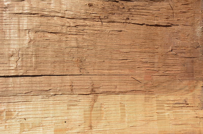 Wood Texture #1