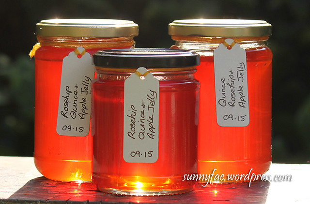 Homemade Rosehip Quince Apple Jelly