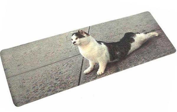 cat-yoga-mat-10-23-15