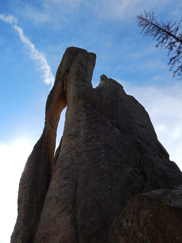 Custer State Park - the needle