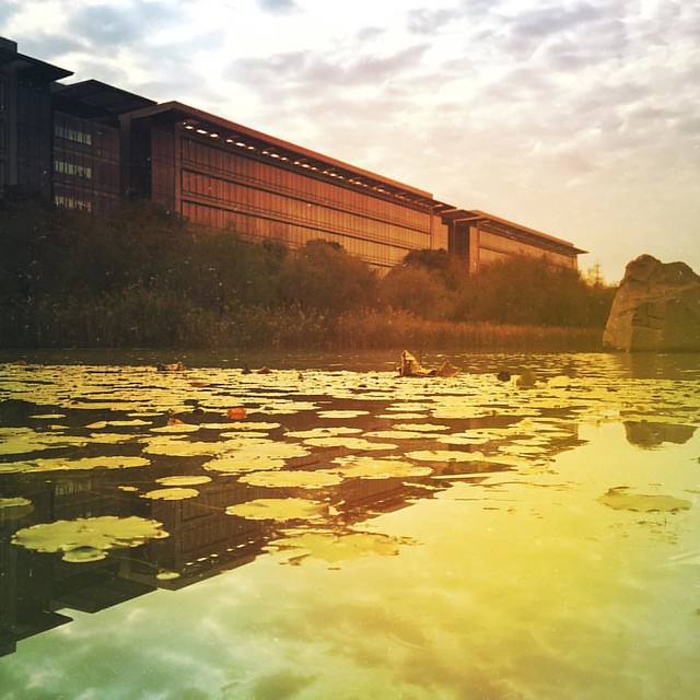 华为公司上海研究所 #mextures @cissy_1985 @思思喵