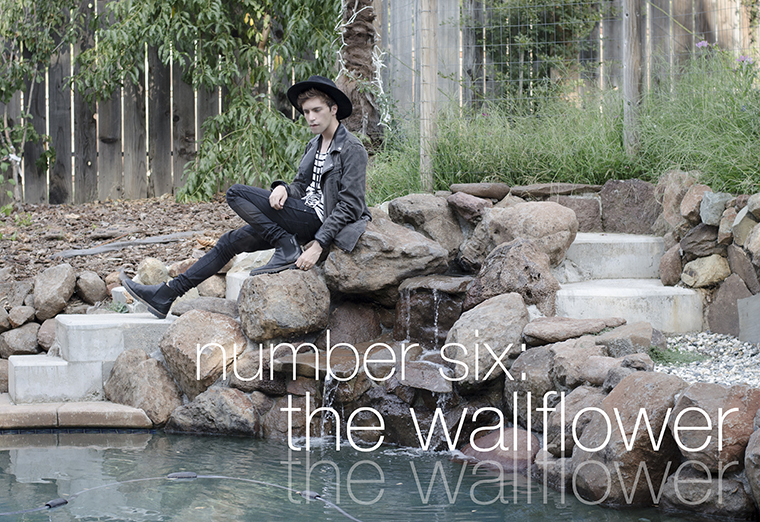 number six the wallflower