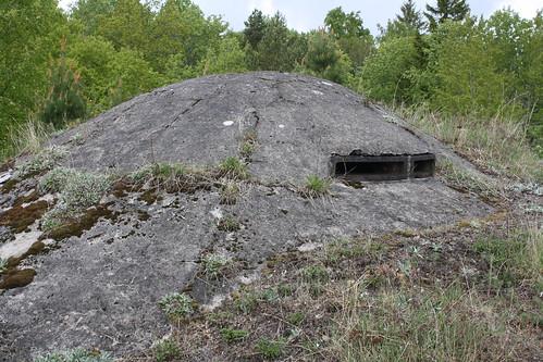 Håøya fort (102)