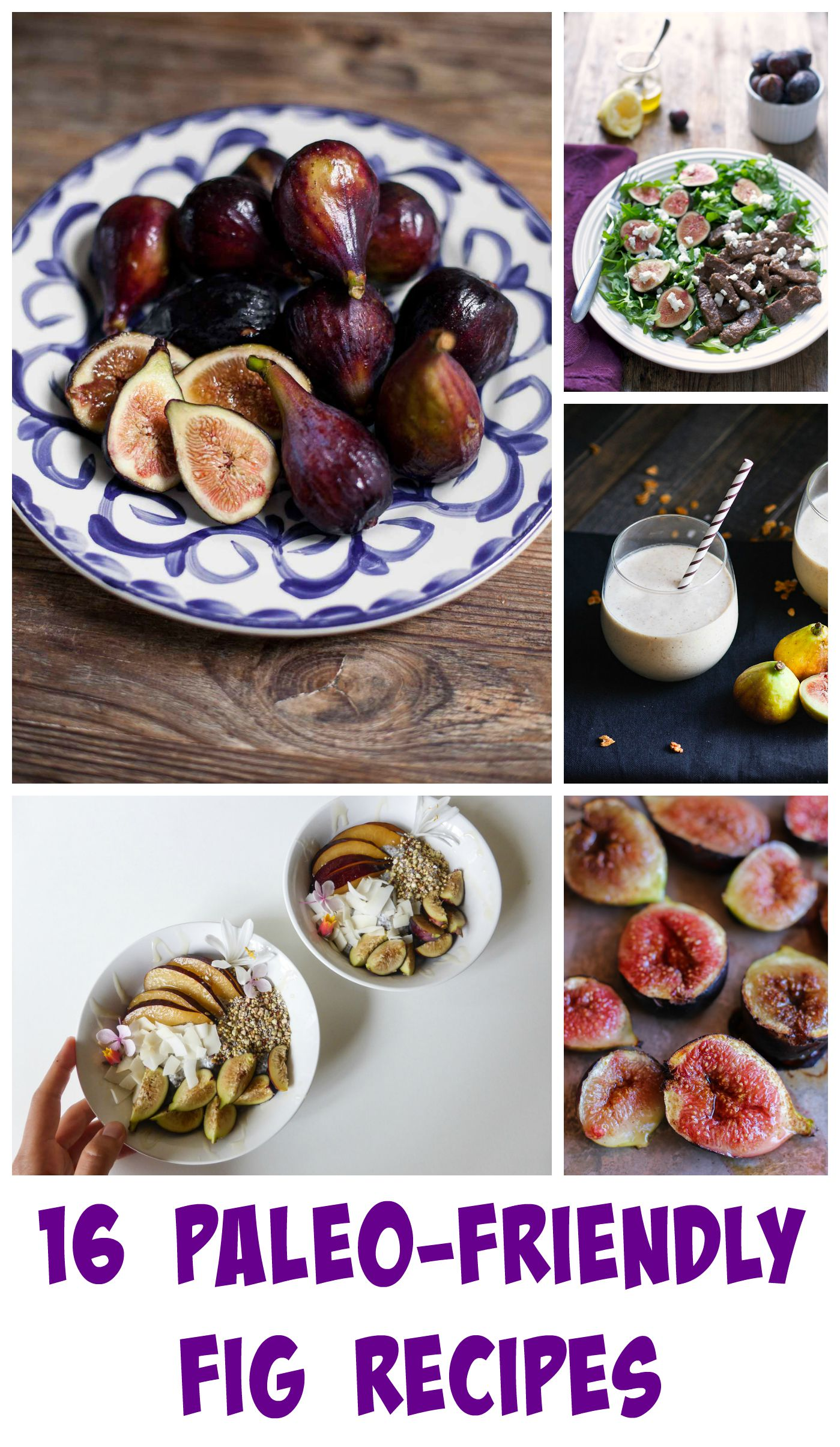 16 Paleo-Friendly Fig Recipes | acalculatedwhisk.com