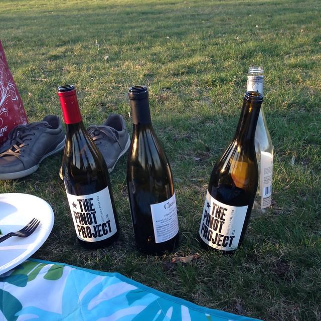 Aggressive picnic