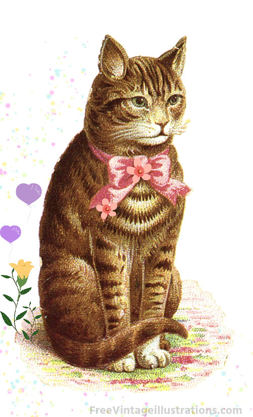 free vintage clipart of a house cat with bow this