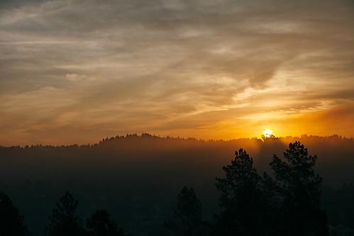 morning sun fog sunrise beginning vsco