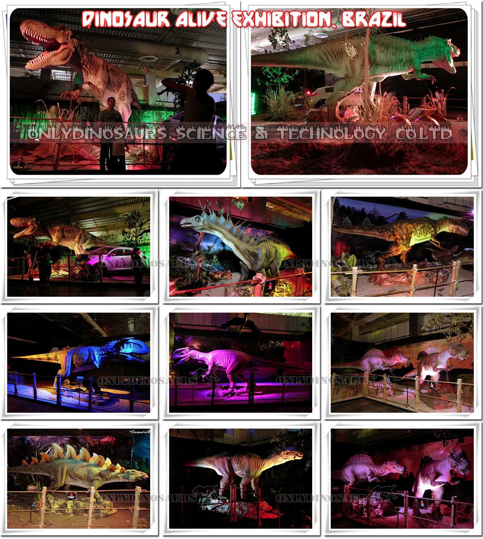 Popular Dinosaur Exhibition