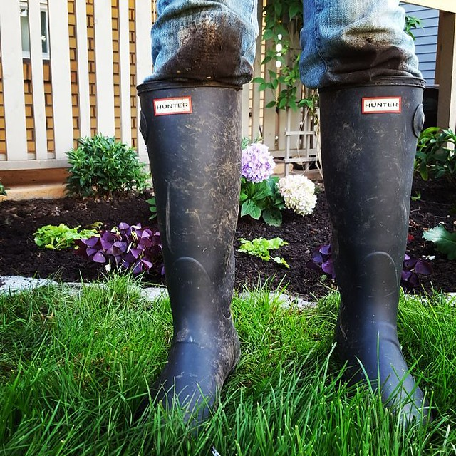 Does anyone else use their Hunters for work? #365photochallenge #hunters #gardening #workboots #notjustprettyfootwear