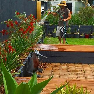 Playing in the #outdoorroom at beautiful #heronscreek ... We love our little #rural #cottage ... #nature #escape