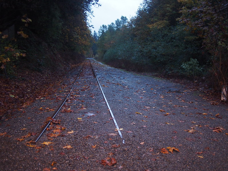 Former BNSF Line: The old BNSF rail line continues past here until where the I-405 widening severed it.