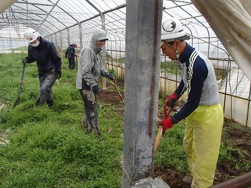 茨城・常総 豪雨水害ボランティア(援人 1123便)