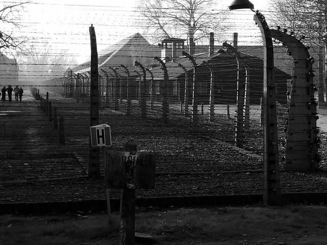 Auschwitz Birkenau (58BN)