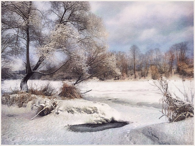 Frosty day on the river Protva.