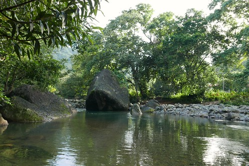 Pool. Pagua River, Dominica.