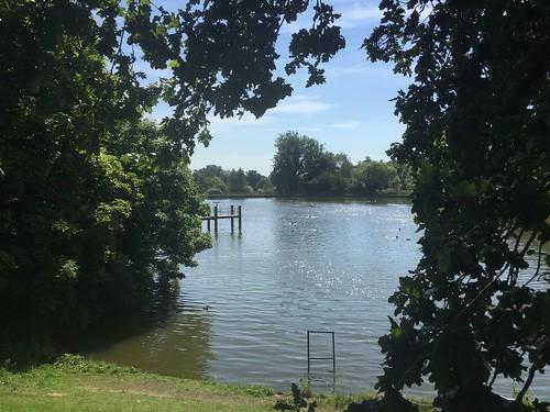 Hampstead heath mens pond