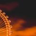 London Eye - Night by Luke Sherren Photography