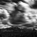 Oregon Cloud Study I by Sandra Herber
