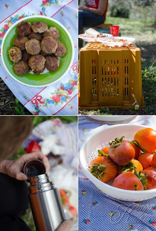 olive raccolta 2015-6