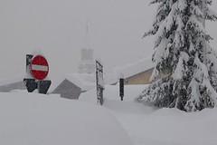 Počasí a sníh: 100% (ne)jistota