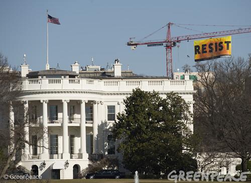 Resist Trump Banner Action