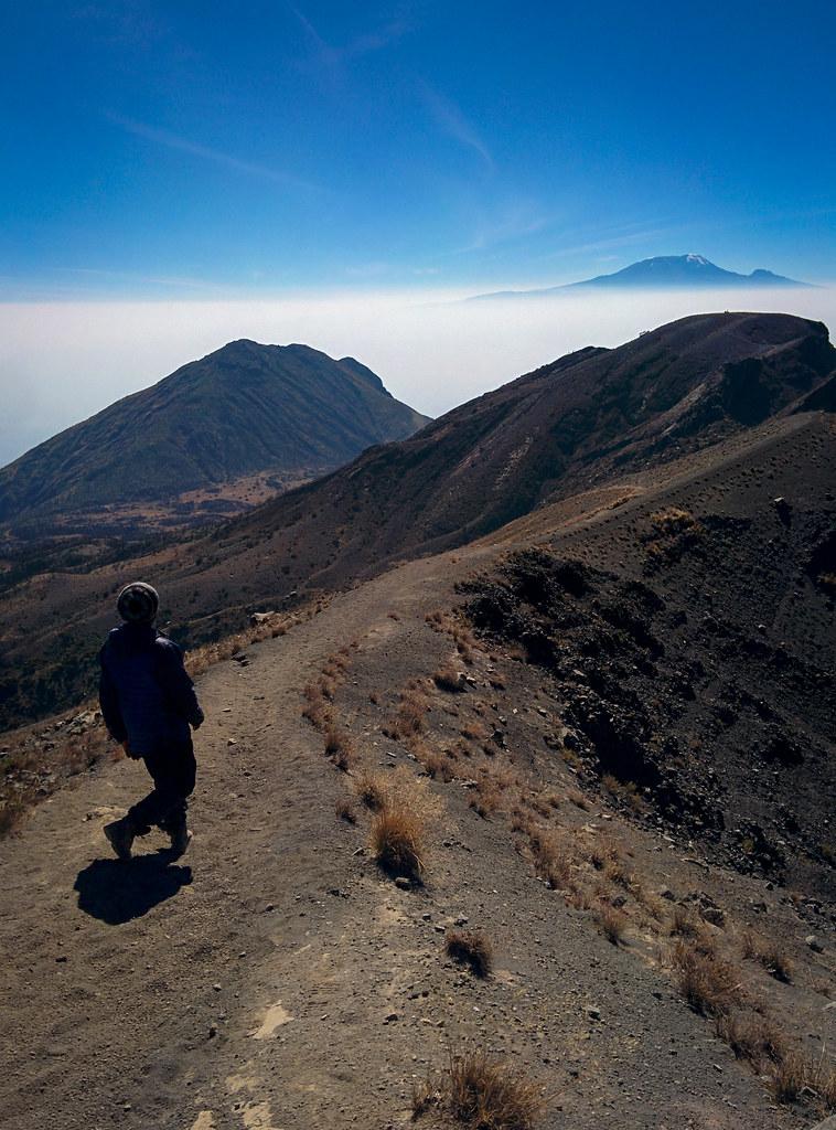 Abstieg vom Gipfel immer mit dem Kili im Blick - 3. Tag Mount Meru Tour zur Akklimatisierung. Tansania - Kilimanjaro Kraterschläfer Expedition 2016, Wikinger Reisen
