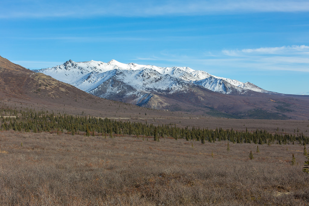 Alaska. Denali National Park