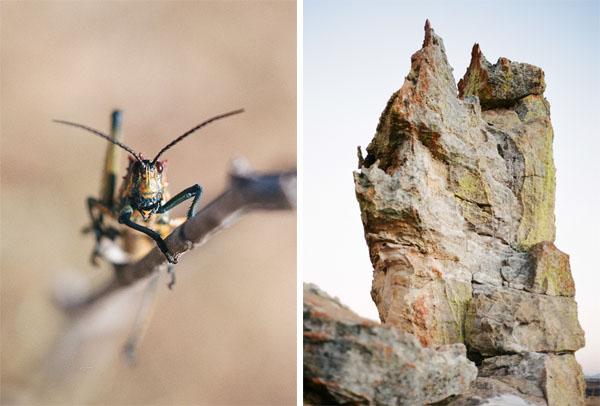RYALE_Madagascar_Blog2_031