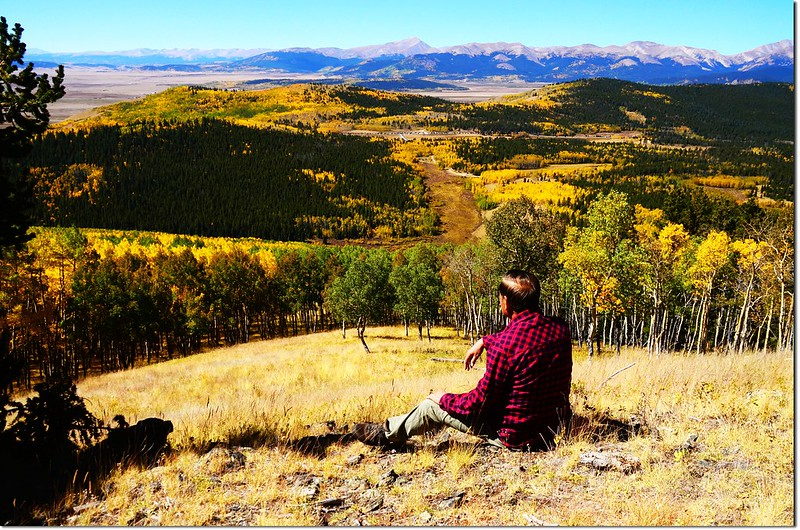 Fall colors at Kenosha Pass, Colorado (15)