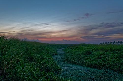 sky cloud nature sunrise river dawn outdoor horizon wideangle caribbean ricefield daybreak trinidadandtobago caroni sigma1020mm1456exdchsm nikond5100