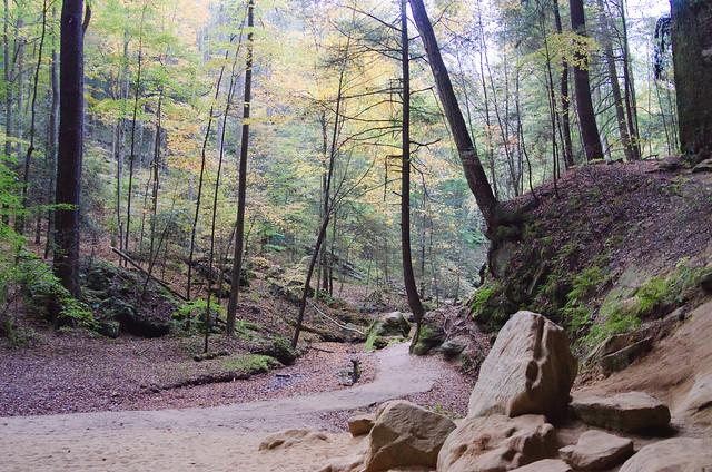 20151017-Hocking-Hills-Ash-Cave-1724