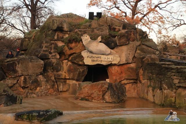 Zoo Berlin 27.11.2015   60