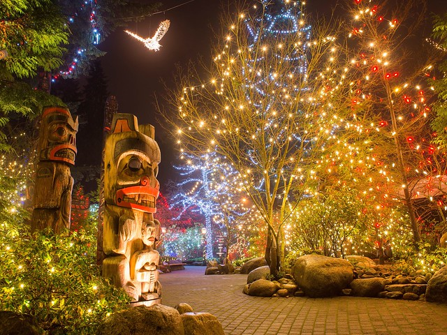 The rainforest is illuminated with magical lights at Capilano Suspension Bridge Park.